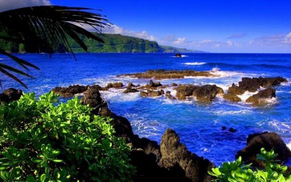 Maui, Hawaii (creative commons)