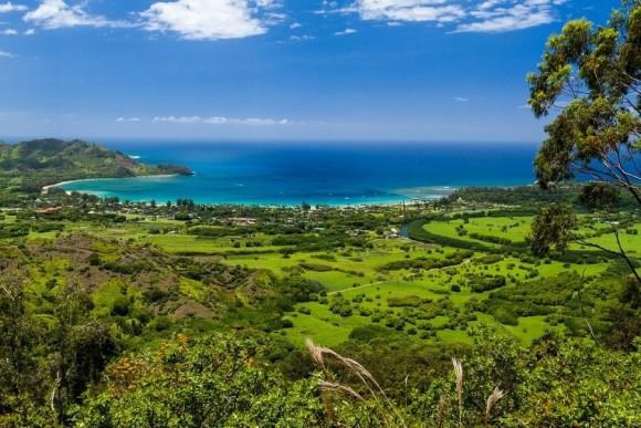 Kauai Nature by Lary Loose (creative commons)
