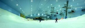 Ski Dubai Slope by Filipe Fortes (creative commons)